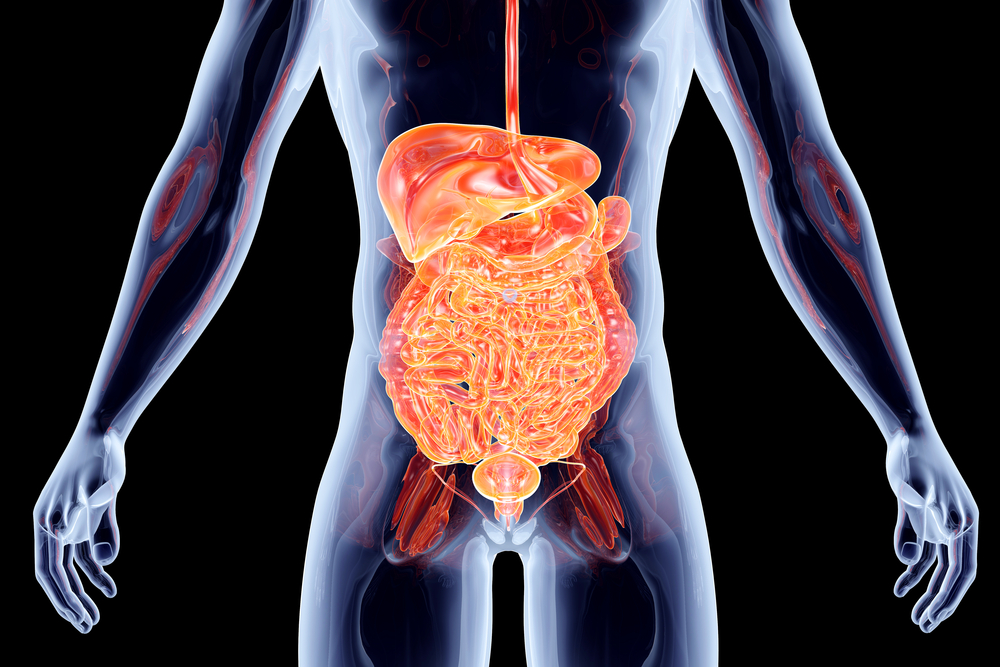 I disturbi gastrointestinali sono molto comuni soprattutto tra gli atleti di resistenza